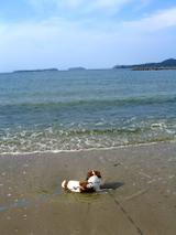 Len_sea